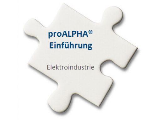 Projektleitung ERP-Einführung Elektroindustrie